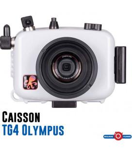 Olympus TG4 + Caisson Ikelite